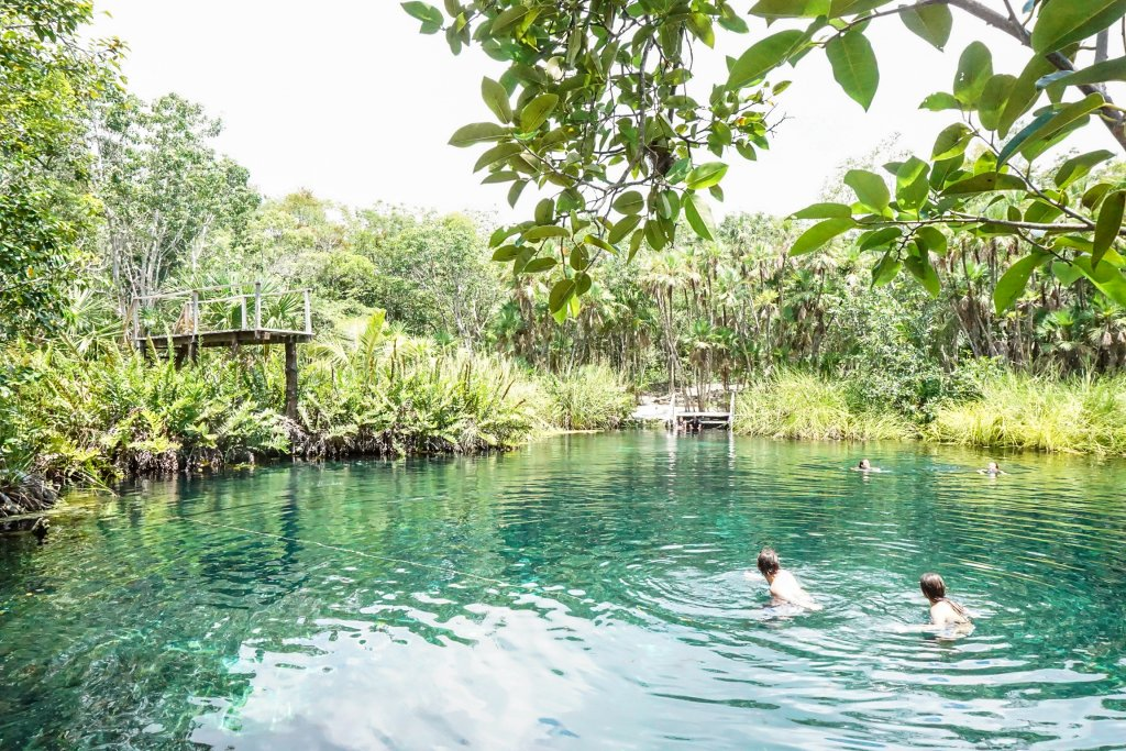 gorgeous scenery at Cenote Cristal