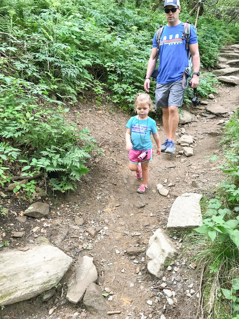 hiking Craggy Gardens with kids