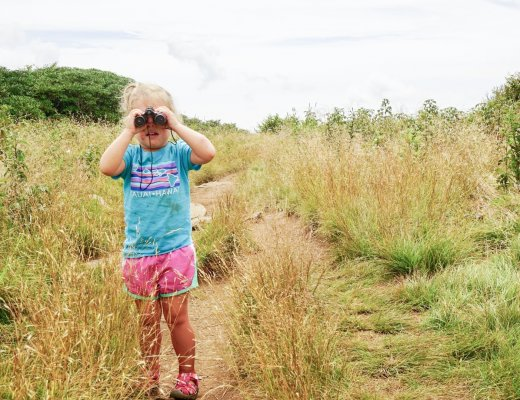 Hiking Craggy Gardens - Asheville with kids