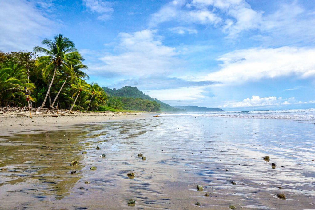 Playa Hermosa - a sandy beach lined with palm trees