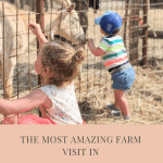 fun farm visit in Tuscany with kids