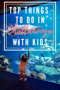 top things to do in Chattanooga with kids- small girl looking at shark in aquarium