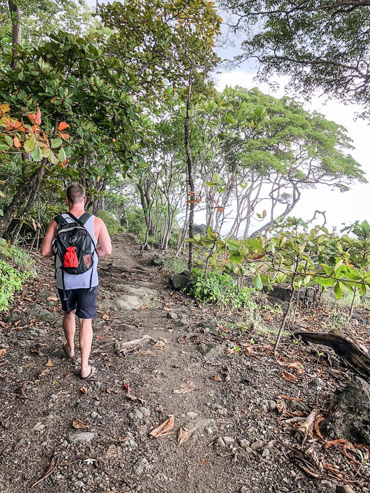 hiking through the jungle near the ocean