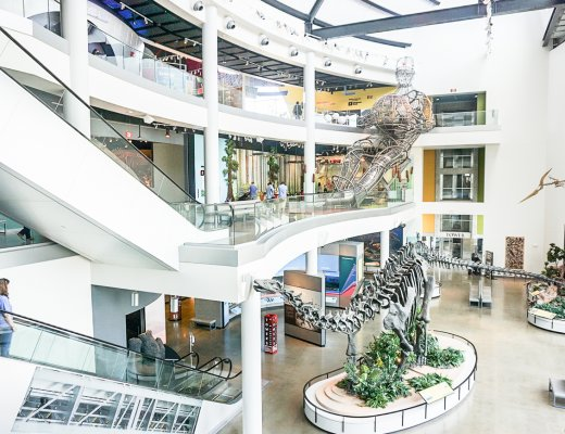 large atrium at Discovery Park of America with dinosaur fossils