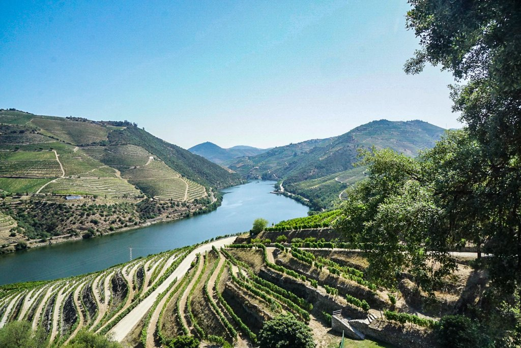 overlooking the beautiful Douro  River Valley with vineyards lining the hills