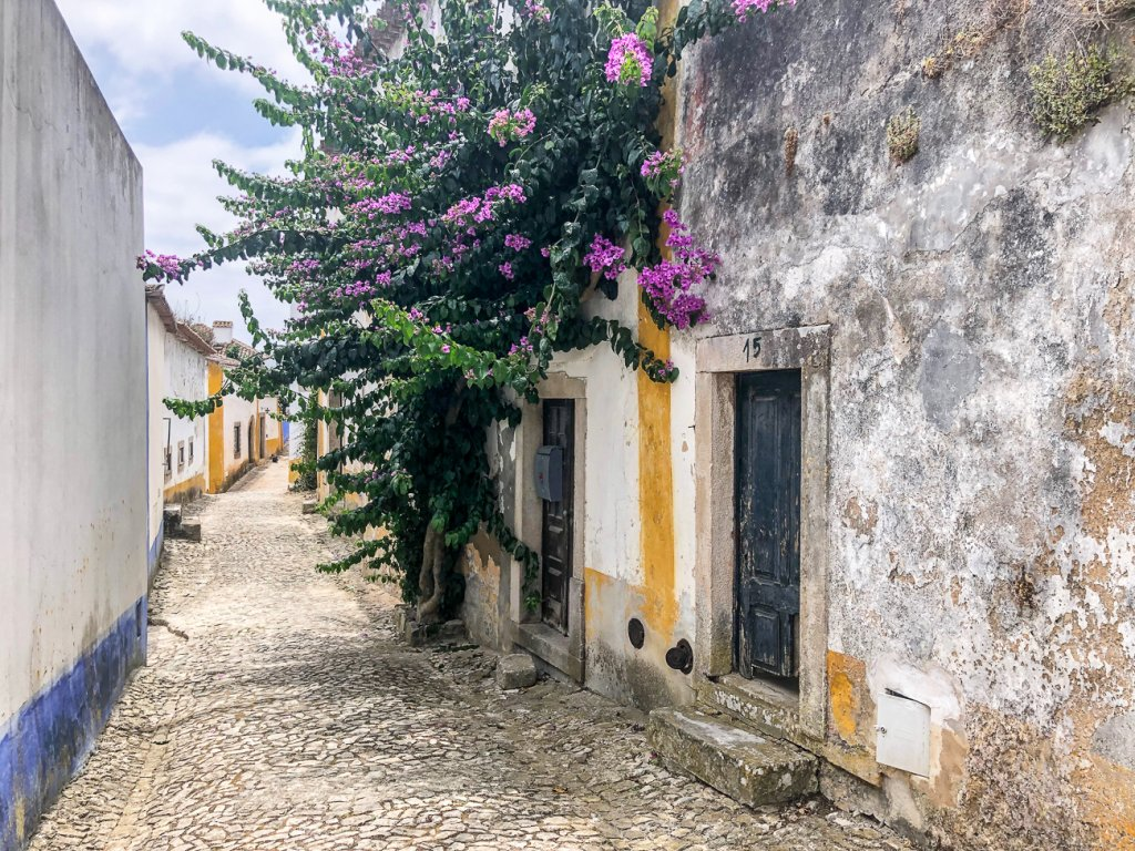 empty cobblestone streets in Obidos Portugal with beautiful flowers growing