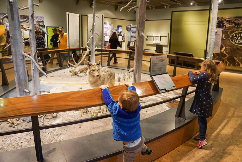 kids checking out the exhibits at Old Faithful visitors center