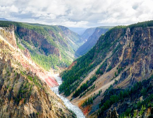 view over the grand canyon of yellowstone