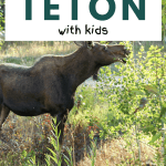 best of grand teton with kids