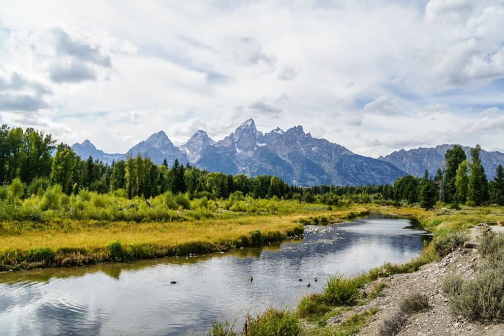 Schwabacher Landing with creek in foreground and Teton range behind